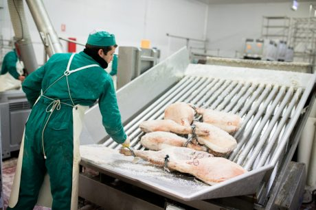 Fabricantes y productores de jamones